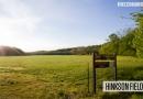 Hinkson Field